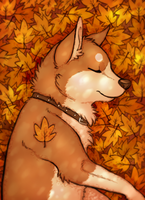 Autumn by Scarfowl