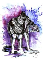 Xuay ink and watercolor.... by paleWOLF