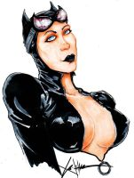 catwoman color by ChrisOzFulton
