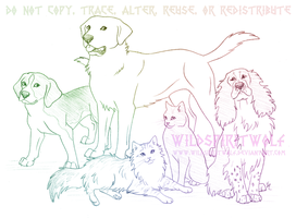 Domestic Dog And Cat Group Sketch by WildSpiritWolf