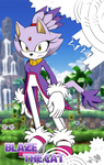 .: Blaze the Cat PSAL Bio :. by PhoenixSAlover