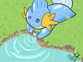 Mudkip by SometimesCats