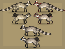 Civet/Genet mix color ideas by eco226