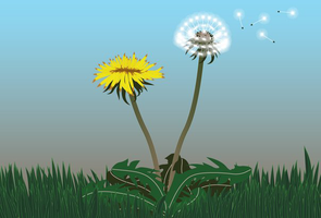 Blow Away, Dandelion by doctor-morbius
