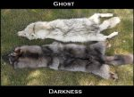 Ghost and the Darkness by Sharpe19