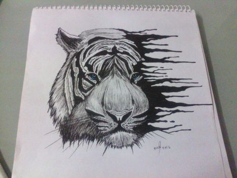 white tiger sketch by mrferdz