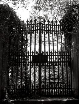 At The Gates Of Light... by MoonEssence