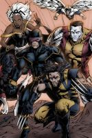 X-Men by Tollbooth10