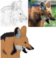 Maned Wolf Talking (2012) by CherrySapphire