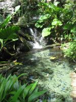 Waterfall and Pond by GreenEyezz-stock