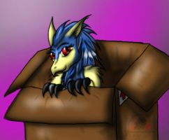 Cockie in a Boxie by Snowfyre
