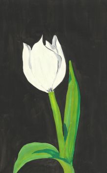 A Tulip for Walter by LadyZasso