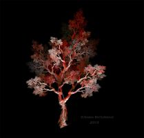 fractal tree 41-2 by Alvenka