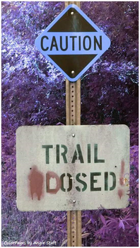 Trail Dosed by angiestaft