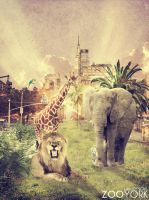 Zoo York by LakoDesigns