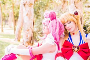 Chibi Moon and Sailor Moon - I by fiathriel