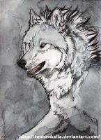 ACEO: Cally-Dream by Tuonenkalla