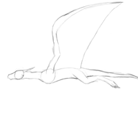 Flying dragon animation by BurningAshDragon