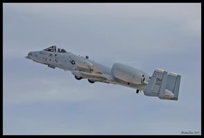 Nellis Hog by AirshowDave