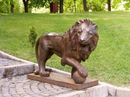 lion by compot-stock