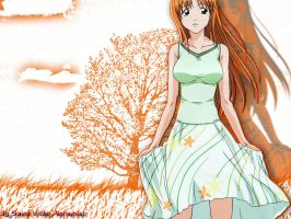 Orihime Wallpaper 2 by turmadoguetoh
