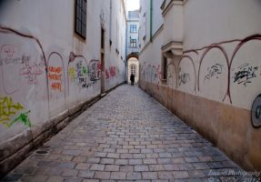 The alleyway by Zouberi