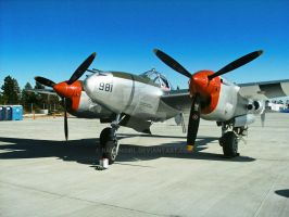 P-38 at the Members Party by BaronGirl