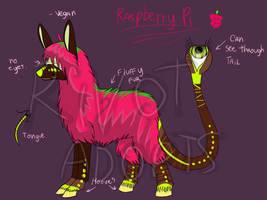 Raspberry Pi - Auction! by RivotAdopts