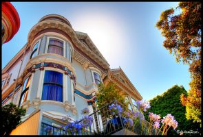 Painted Lady HDR by andrearossi