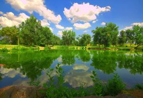 Fountain Valley Pond by greenunderground