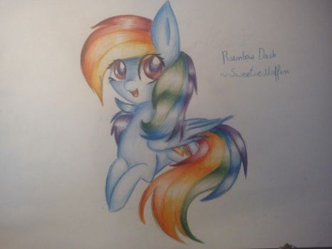 MLP FIM: Rainbow Dash by SweetieMuffin