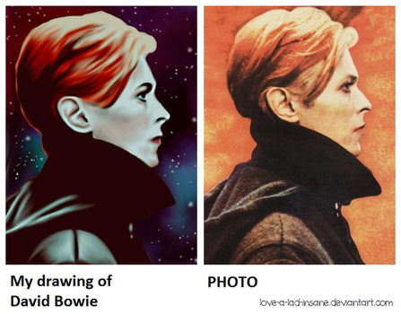 Drawing VS Photo #4 by love-a-lad-insane