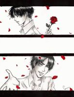 SNK - A rose for you by ChocotanYuu