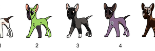 Bull Terrier Adopts - Adopted by Feralx1