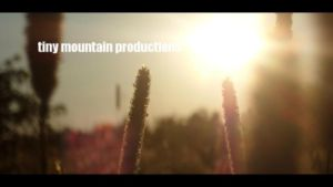 tiny mountain productions by Kmind3
