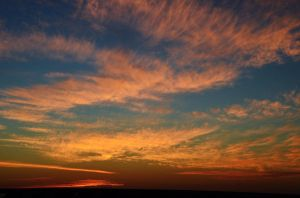 Pink Feather Clouds by Marilyn958