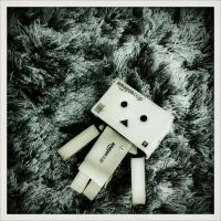 danbo field of darkness by ravindrakumar