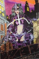 the Huntress  by ShawnVanBriesen colored SSG Joey by SSGJoey