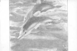 Dolphins by arwenpotter