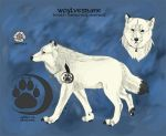 Woylvesbane Official Reference Sheet 2014 by Ice-cold-Werewolf