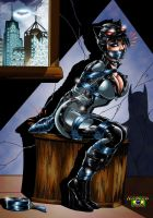 Commission_Catwoman by NickLaw-Arts