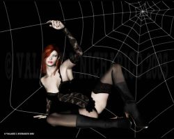The Widow by vaia