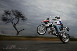 Wheelie BMW by perigunawan