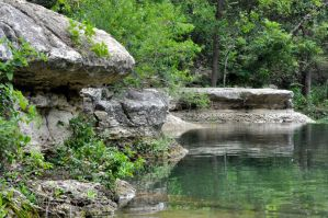 Grey Forest Swimming Hole by jdchaffee