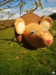 The Dormouse by ArtyMissK