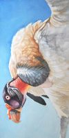 King Vulture by Kyndir