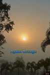 Agent Orange by JAE462