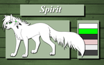 Spirit Reference by TheWolfFight