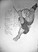 Spiderman - Classic by KPants