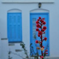 On your door by Nile-Paparazzi